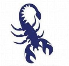 horoscope du signe du scorpion